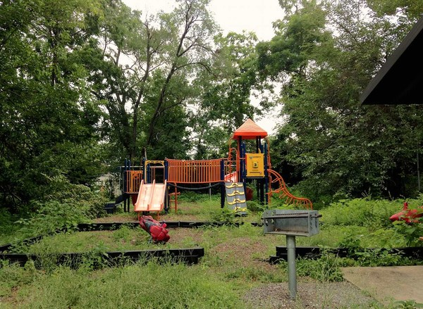 This is the only park available to families in Pine Lawn, in North St. Louis. As the image shows, it is overgrown with weeds, has broken down play equipment, and is utterly neglected.